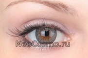 Neo Cosmo Two Tone 235